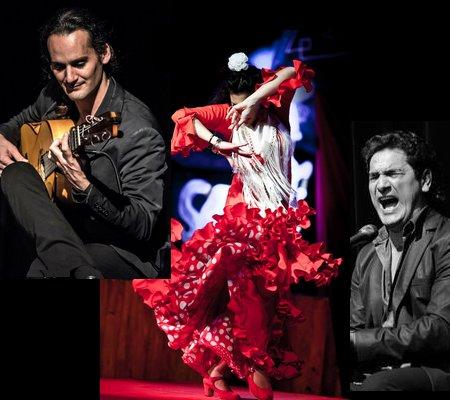 passion flamenco